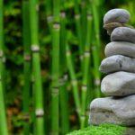 Ładny oraz schludny zieleniec to zasługa wielu godzin spędzonych  w jego zaciszu w toku pielegnacji.